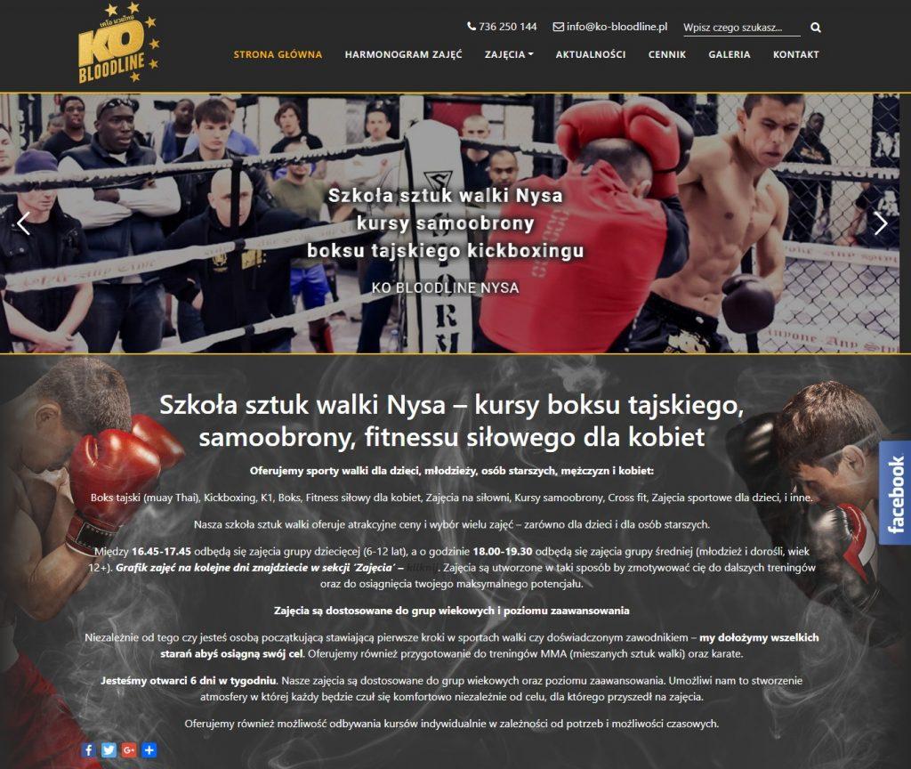 Strona internetowa dla szkoły sztuk walki